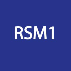 RMS1-AI